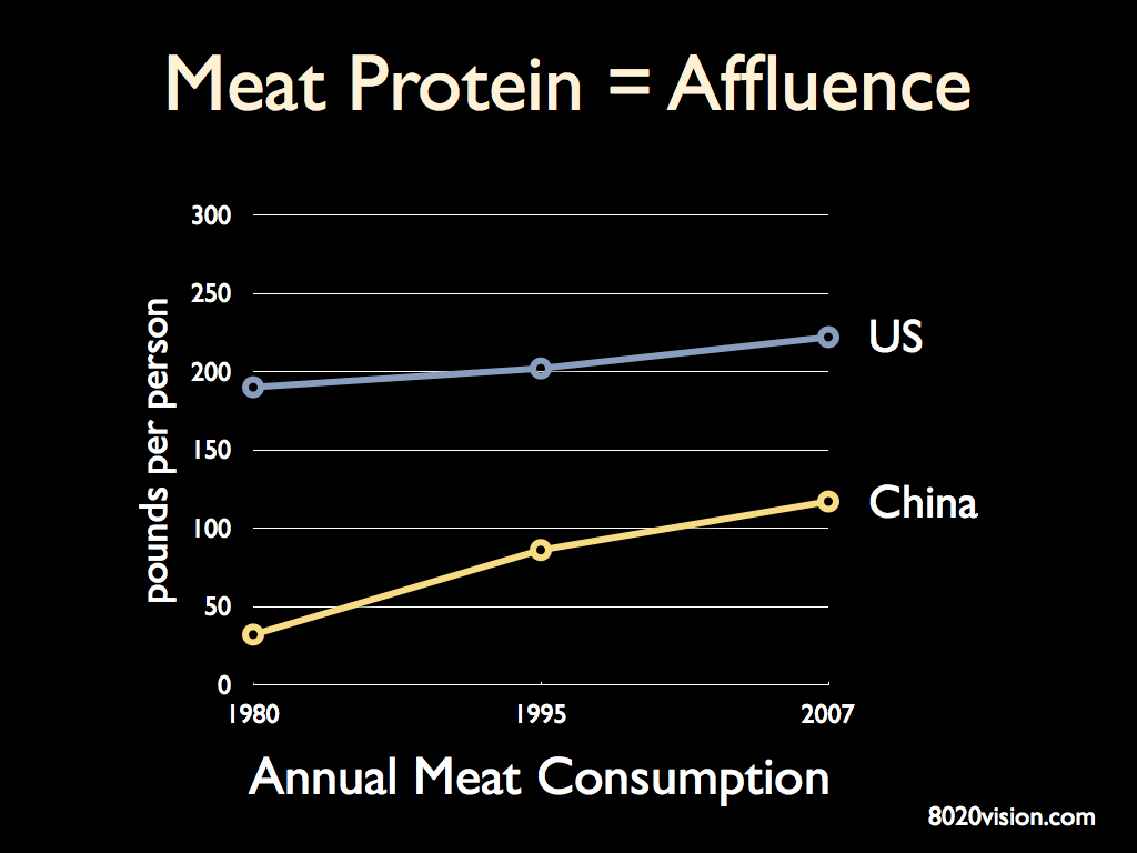 Meat Protein Consumption in US and China
