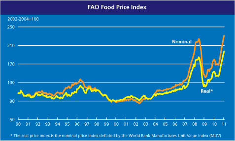 FAO Food and Agriculture Organization food price index 2010