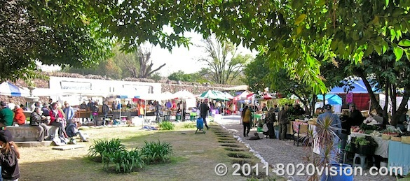 saturday organic farmers market in San Miguel de Allende, Mexico